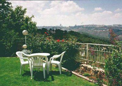 Mishpat Dreifuss St - Garden and View